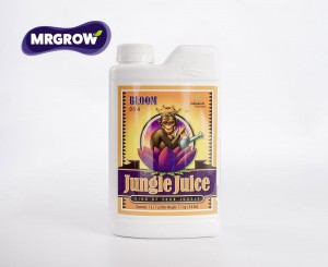 Jungle Juice Bloom (1l)