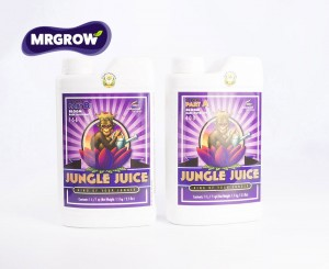 Jungle Juice Bloom A&B (2x1l, 2x5l)