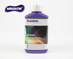 Green Sensation (100ml, 0.25l, 0.5l, 1l, 5l)