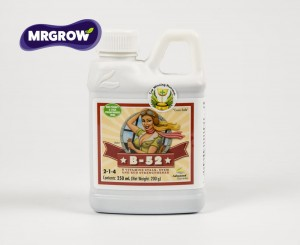 B-52 Fertilizer (0.25l, 0.5l, 1l, 5l)